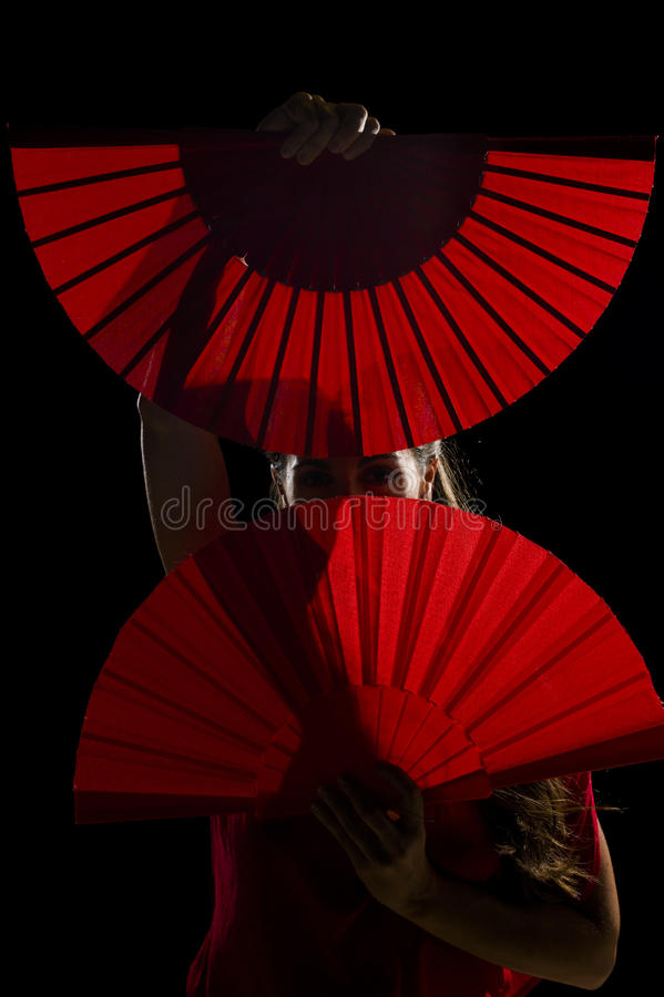 Download Geheimnisvoller Tänzer stockbild. Bild von tänzer, flamenco - 26350133