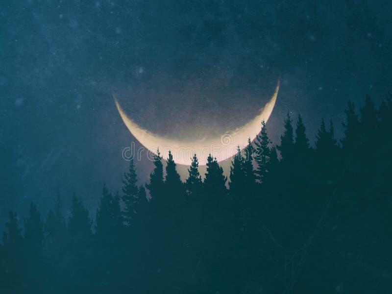 geheimzinnig bos bij nacht met maan en grungy texturen stock foto's