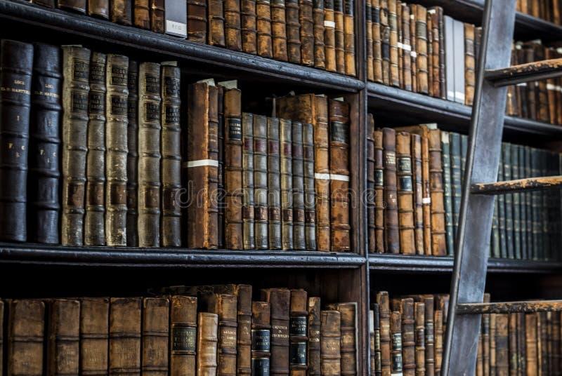 Geheimzinnige bibliotheek royalty-vrije stock afbeeldingen