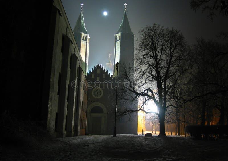 Geheimzinnige gotische kathedraal in Plock Polen bij nacht door het maanlicht Kathedraal van Heilige Maagdelijke Mary van Masovia stock afbeeldingen