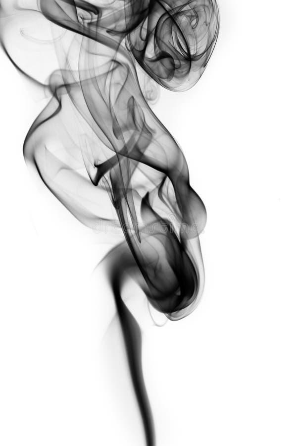 Geheimzinnige Rook stock fotografie