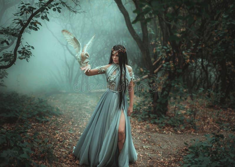 Geheimzinnige tovenares met een vogel stock foto