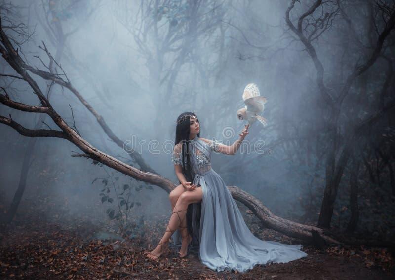 Geheimzinnige tovenares met een vogel royalty-vrije stock foto