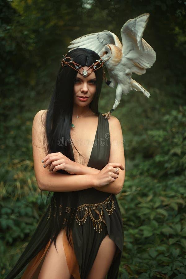 Geheimzinnige tovenares met een vogel royalty-vrije stock afbeeldingen