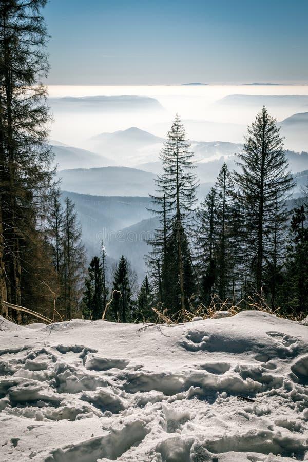 Geheimzinnigheid bergen in de winter stock foto's