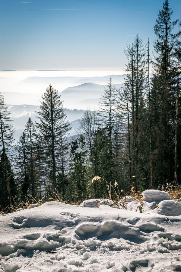 Geheimzinnigheid bergen in de de winter juiste mening royalty-vrije stock foto