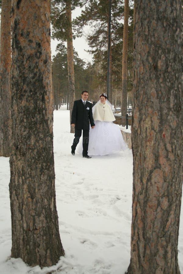 Download Geheiratet stockfoto. Bild von paare, park, schnee, hochzeit - 860526