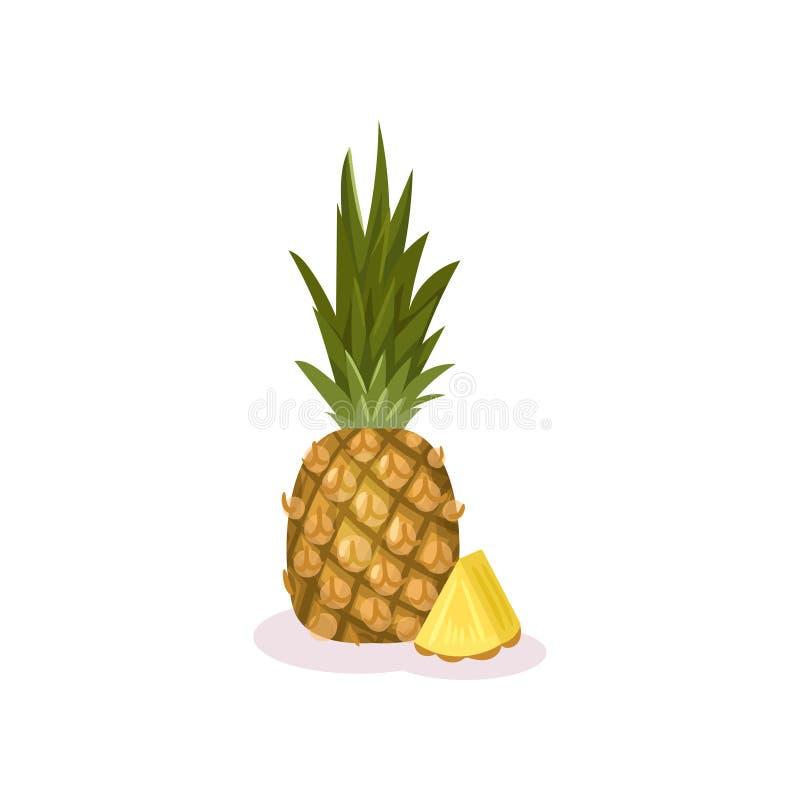 Gehele en kleine plak van rijpe ananas Exotisch Fruit Natuurlijk product Zonnebloemzaden - zaadfonds Gedetailleerd vlak vectoront stock illustratie
