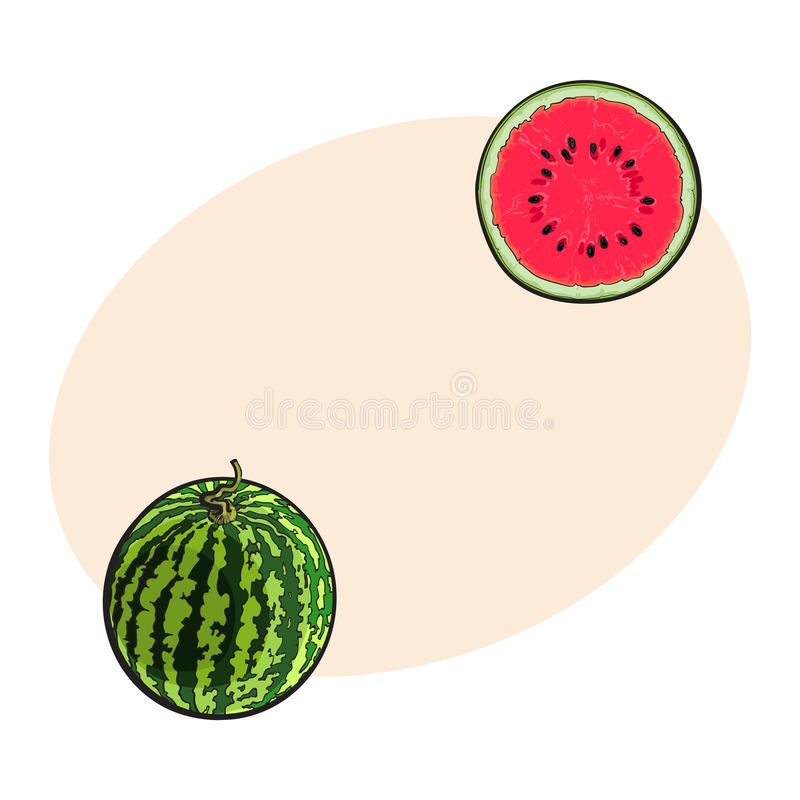 Gehele gestreepte watermeloen en besnoeiing in de helft, schetsillustratie royalty-vrije illustratie