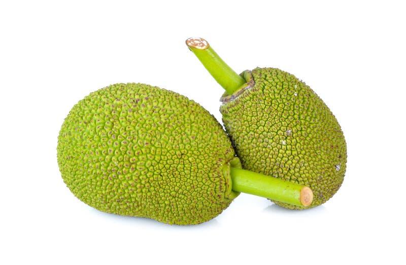 Gehele jonge jackfruit met stam op witte achtergrond royalty-vrije stock foto