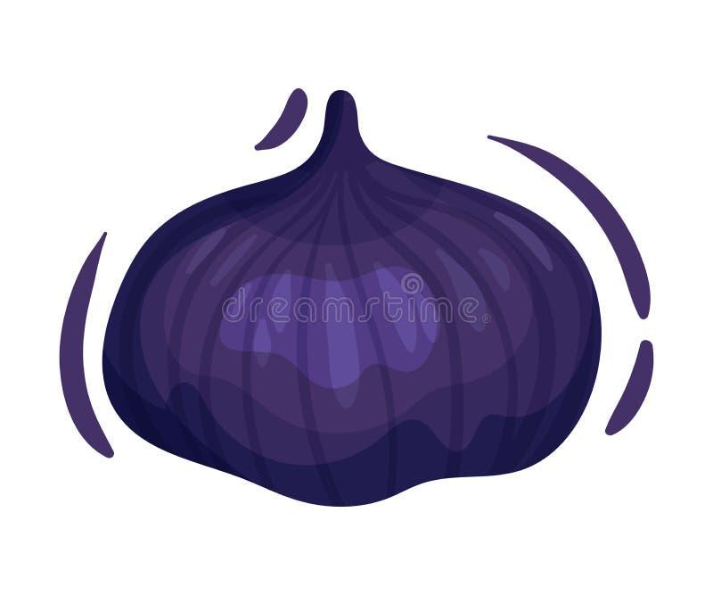 Gehele rijpe fig. Vector illustratie op witte achtergrond royalty-vrije illustratie