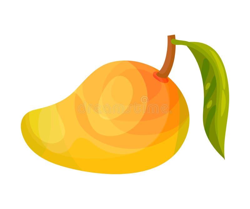 Gehele rijpe mango met een blad Vector illustratie royalty-vrije illustratie
