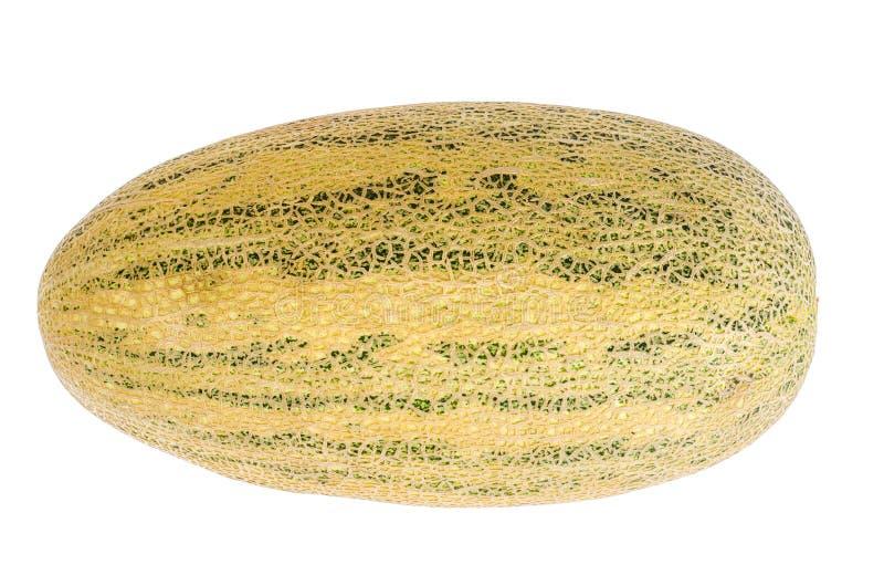 Gehele rijpe zoete die meloen op witte achtergrond wordt geïsoleerd royalty-vrije stock foto