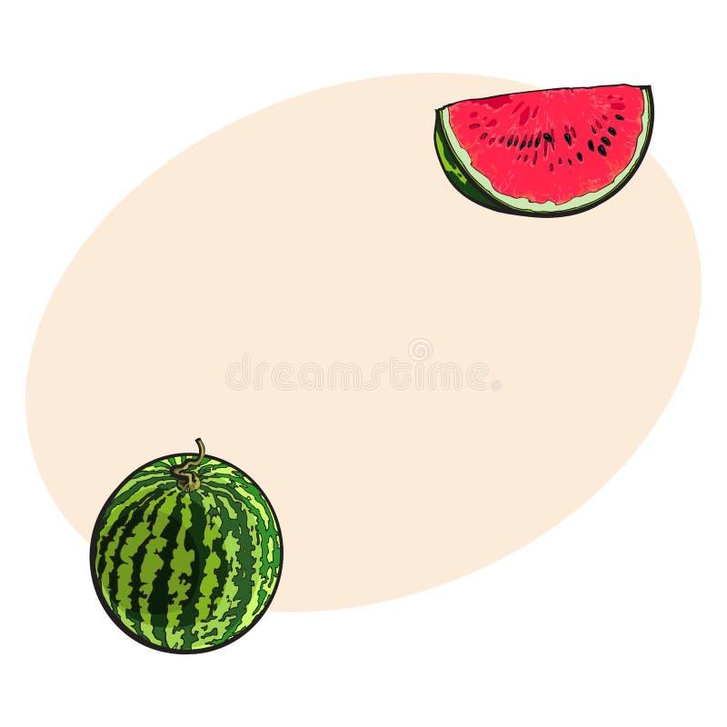Gehele watermeloen en rode plak met zwarte zaden, schetsillustratie vector illustratie