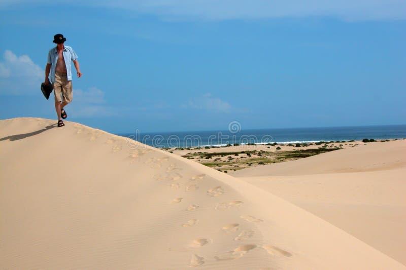 Gehen über die Sanddünen stockbild