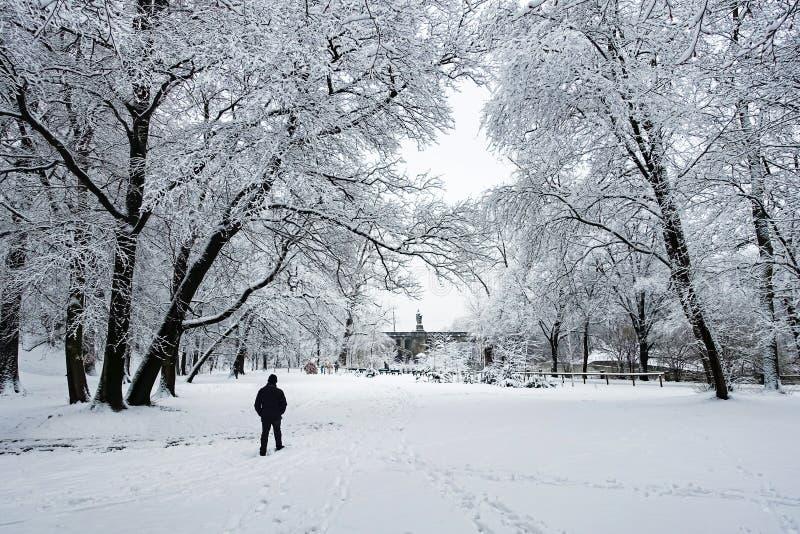Gehen in den Schnee Winter-Landschaft mit dem Mann, der allein in einen Snowy-Park zur Mitte des Bildes geht lizenzfreie stockbilder