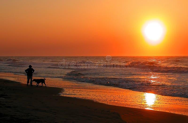 Download Gehen der Hund stockfoto. Bild von sport, übung, aktiv, himmel - 40374