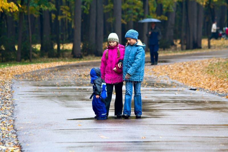 Gehen durch den Herbstpark (4) lizenzfreies stockbild