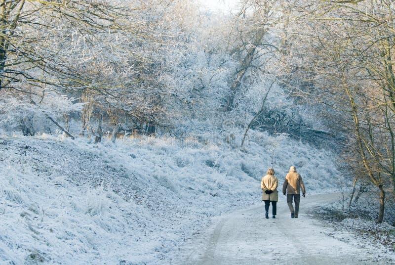 Gehen an einem schönen Tag im Winter stockfoto