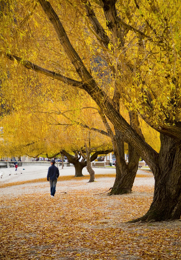 Gehen in Herbst lizenzfreies stockbild