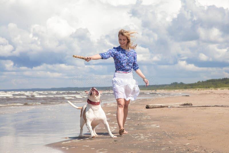 Gehen mit Hund lizenzfreies stockfoto