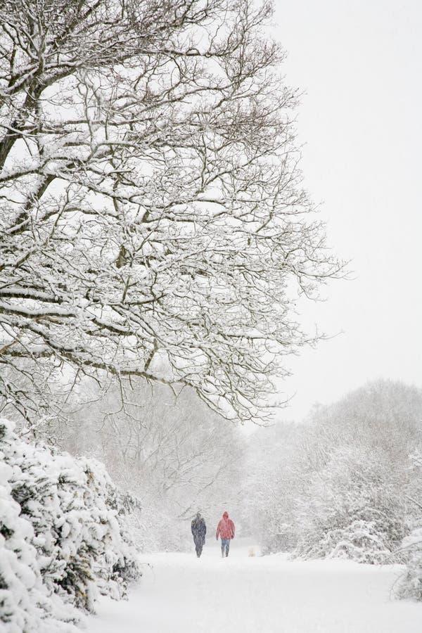 Gehen in Winter lizenzfreies stockfoto