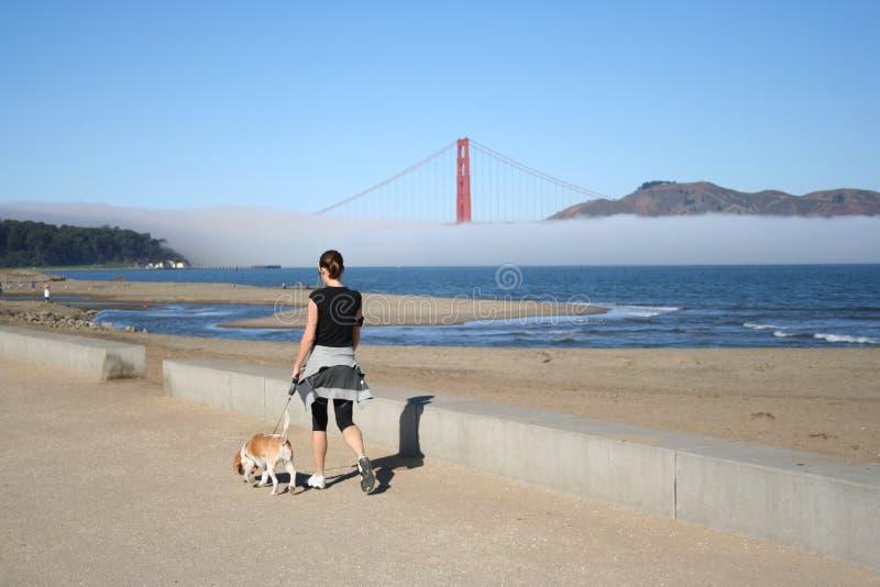 Gehende Frau ihr Hund stockfotografie