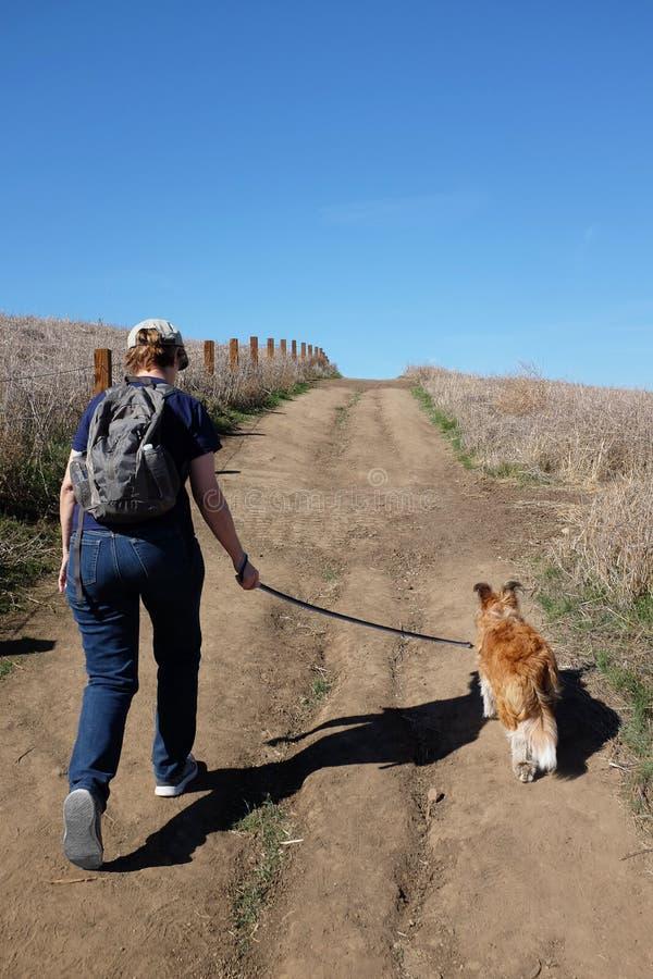 Gehende Frau ihr Hund auf einer Schmutzspur stockbilder