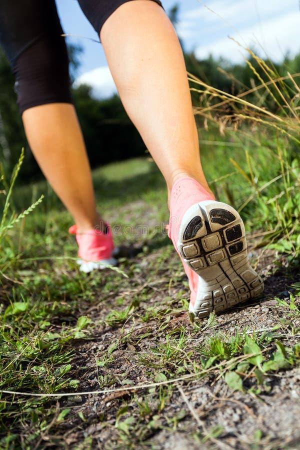 Gehende oder laufende Fahrwerkbeine im Wald, Sommeraktivität stockfotos