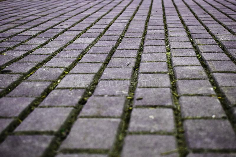 Gehende Straße hergestellt von den Zementpflastersteinen stockfoto