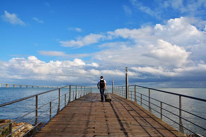 Gehende Weise und Vasco da Gama-Brücke über dem Tajo stockfoto