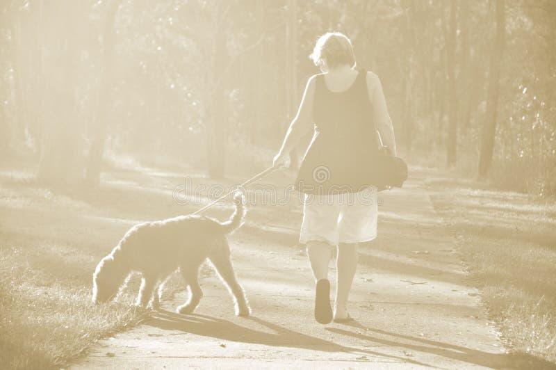 Gehender Hund der träumerischen weichen Sepialichthintergrund-Frau im Holz lizenzfreies stockfoto