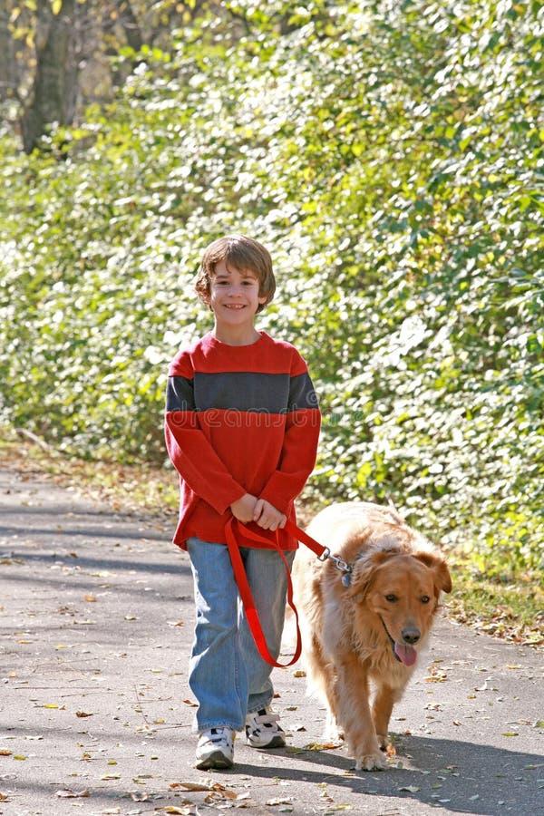 Gehender Junge der Hund lizenzfreies stockbild