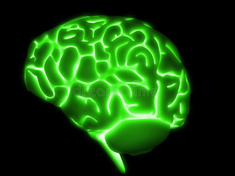 Gehirn 3d vektor abbildung