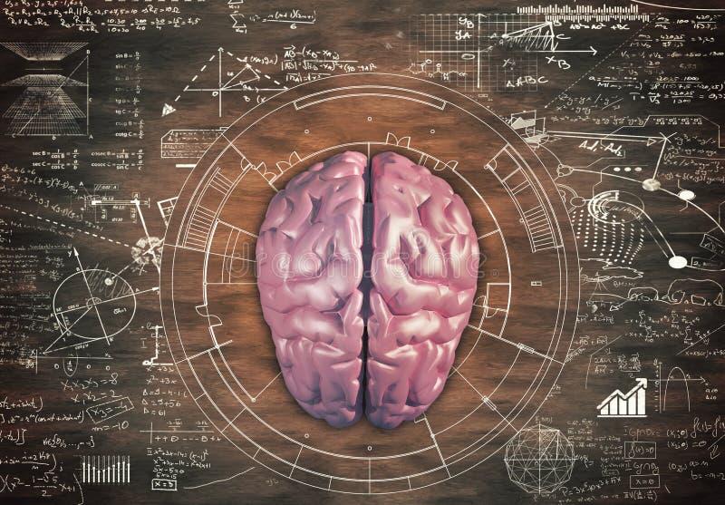 Gehirn gegen einen Holztisch stockfoto