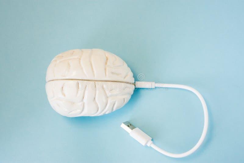 Gehirn mit eingefügt in Sockelsteckerdraht oder in Aufladungsschnur Konzepttechnologie verdrahtete Getriebe von Daten, Informatio lizenzfreie stockfotos