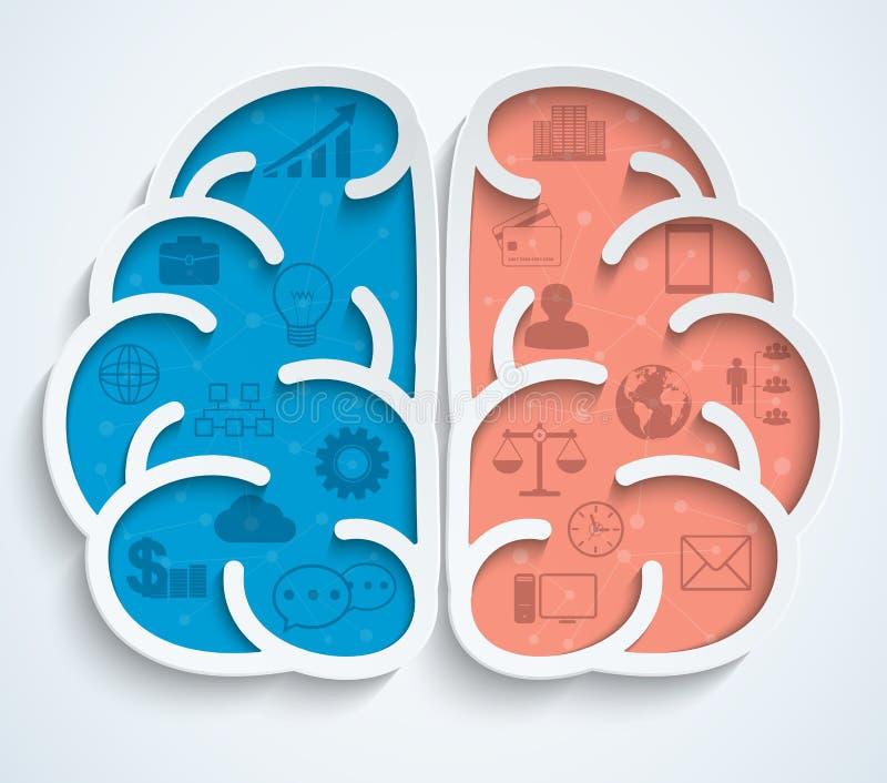 Gehirn mit Geschäftsikonen auf weißem Hintergrund lizenzfreie abbildung