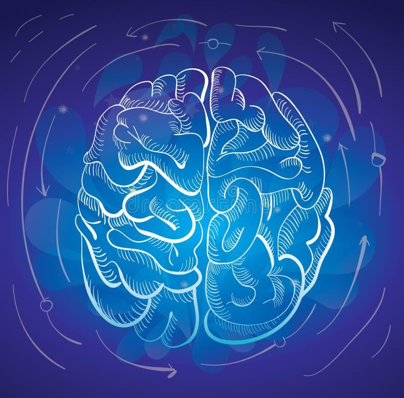 Gehirn und Kreativität lizenzfreie abbildung