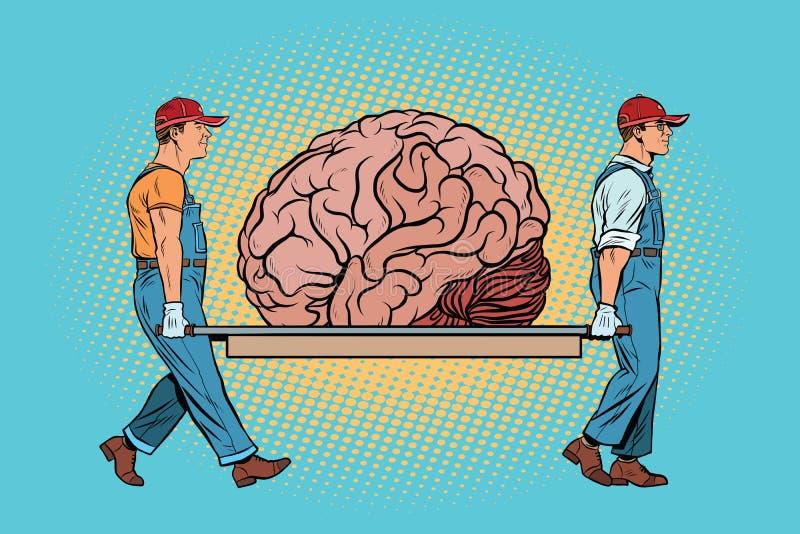 Gehirnbärnreparatur lizenzfreie abbildung