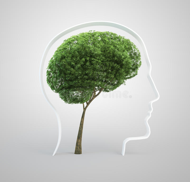 Gehirnbaum - menschlicher Kopf stockfotos
