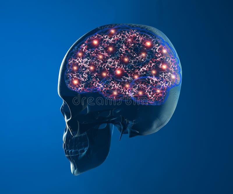 Gehirnneuron-Synapsenfunktionen stock abbildung