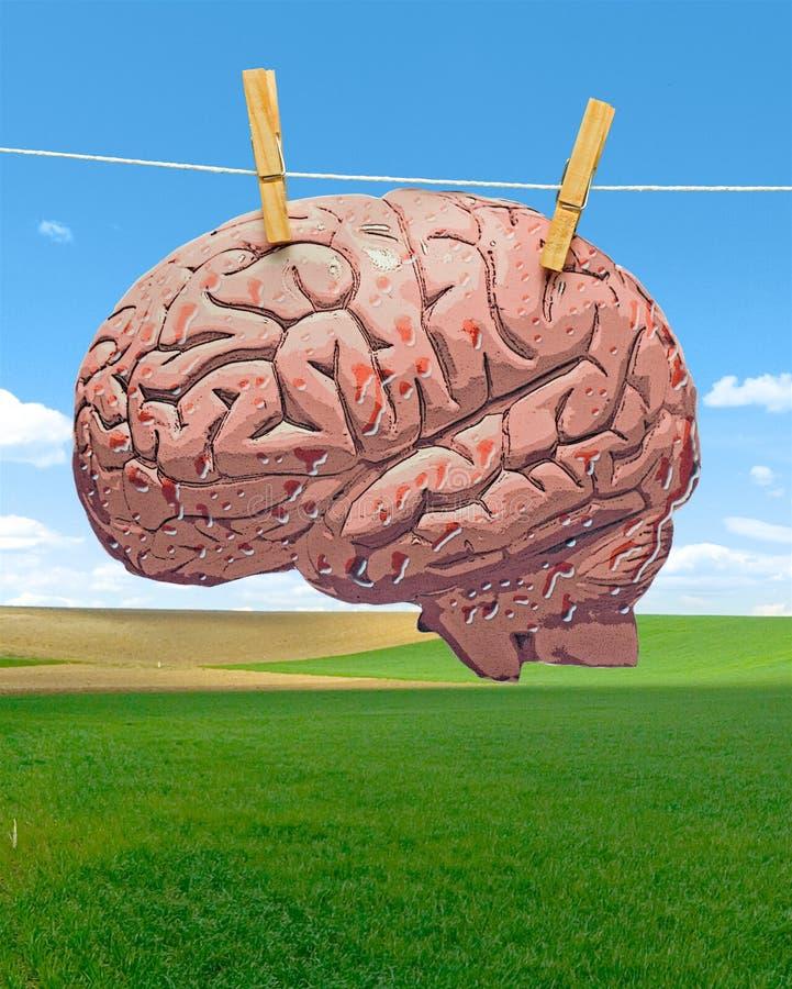 Gehirnwäsche lizenzfreie stockfotografie
