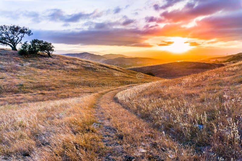 Gehweg auf den grasartigen Hügeln Süd-San- Francisco Baybereichs bei Sonnenuntergang, San Jose, Kalifornien lizenzfreie stockfotografie
