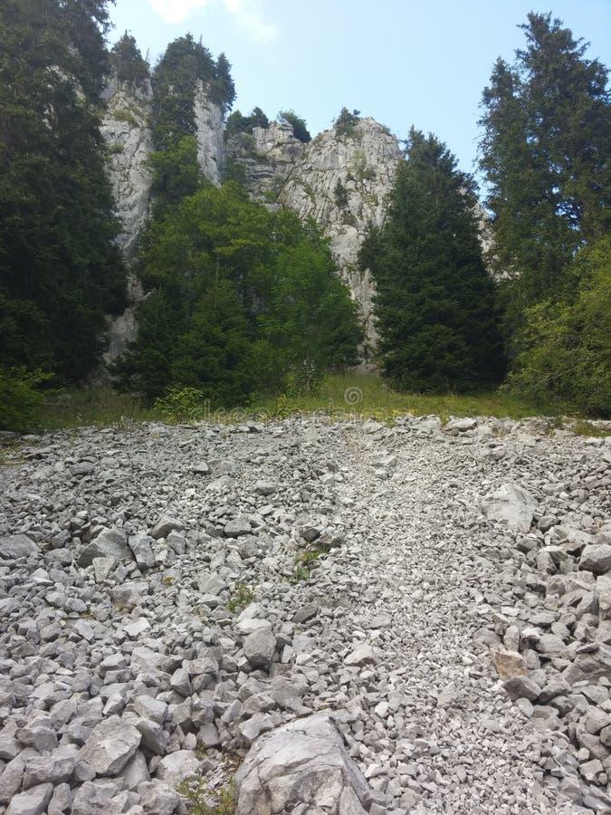 Gehweg in den Alpen lizenzfreie stockfotos