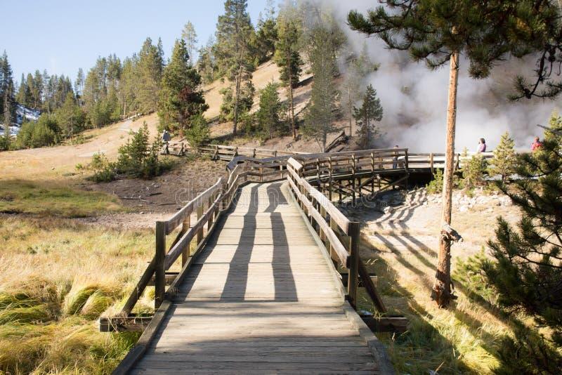 Gehweg, der heraus vorangeht, um einige Geysire, Yellowstone Nationalpark zu sehen lizenzfreies stockfoto