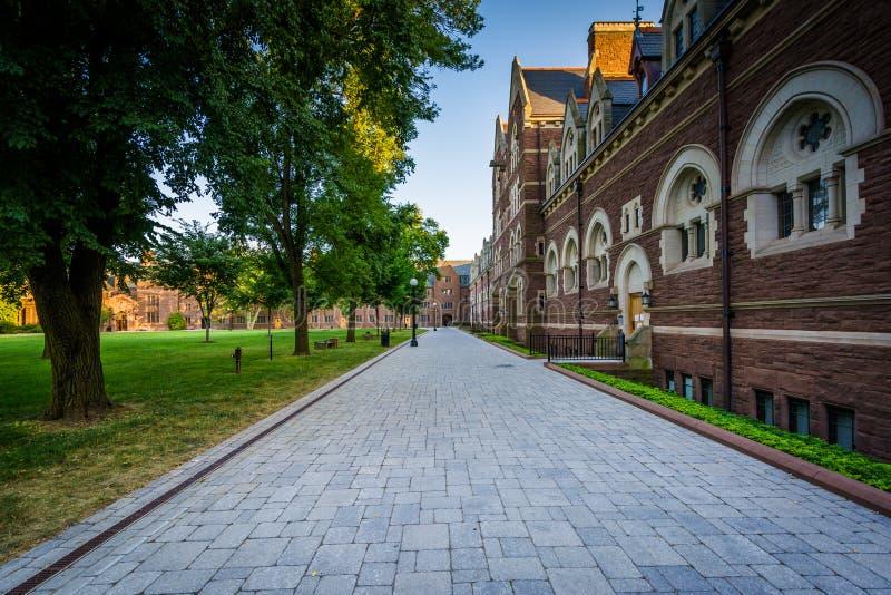 Gehweg und die Gebäude des weiten Spaziergangs am Dreiheits-College stockbilder