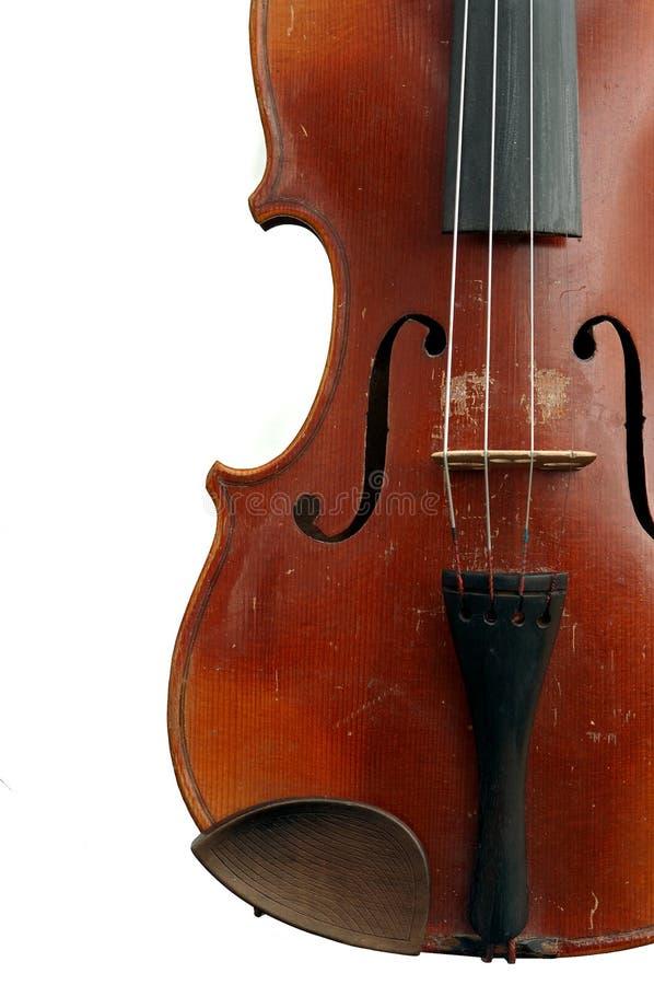 Geige lizenzfreies stockfoto