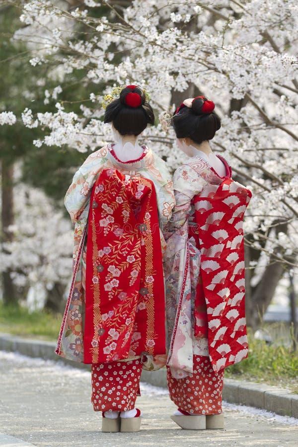 Geiko et Sakura photographie stock