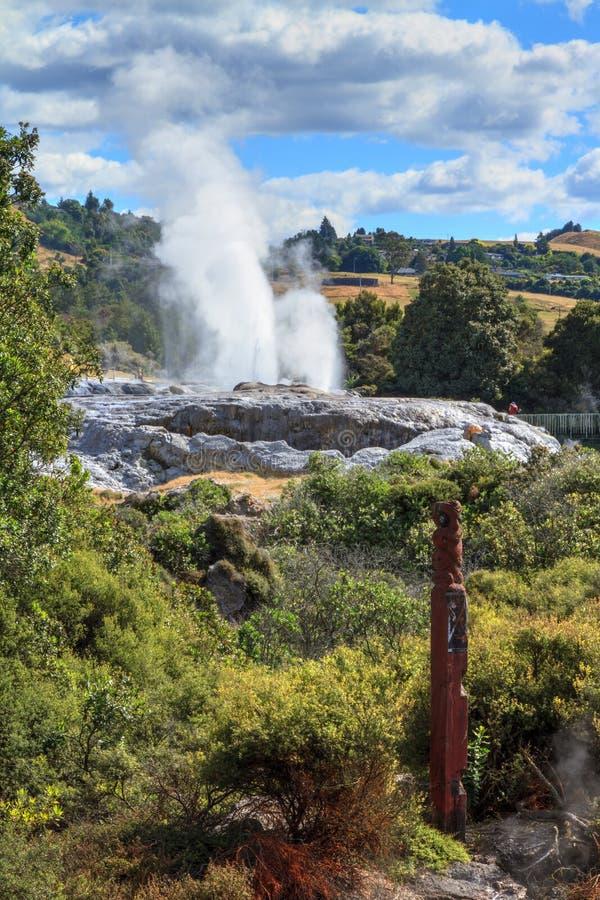 Geiser in het geothermische gebied van Whakarewarewa, Rotorua, Nieuw Zeeland royalty-vrije stock afbeelding