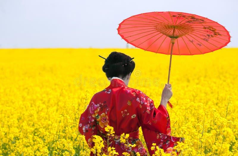 Geisha dans le domaine jaune photos libres de droits